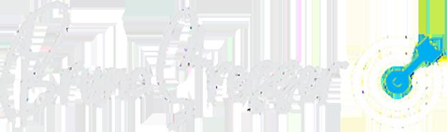 bruno-stresser-logo
